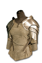 shoulder_heavy_armor_women_02